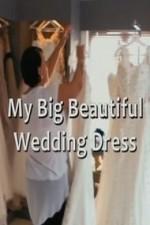 My Big Beautiful Wedding Dress