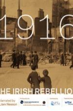 1916: The Irish Rebellion