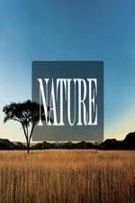 Nature: Season 34