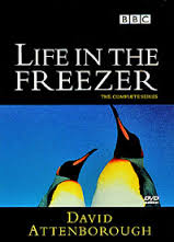 Life In The Freezer: Season 1