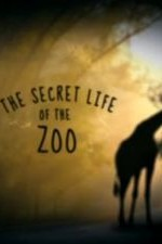 The Secret Life Of The Zoo: Season 4