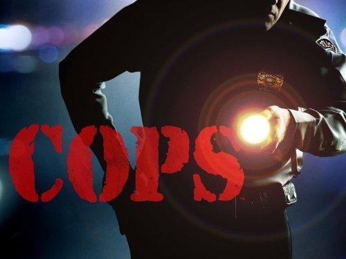 Cops: Season 24