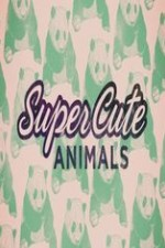 Super Cute Animals: Season 1