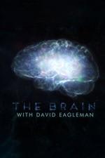 The Brain With Dr. David Eagleman: Season 1