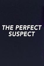 The Perfect Suspect: Season 1