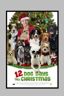 12 Dog Days Of Christmas