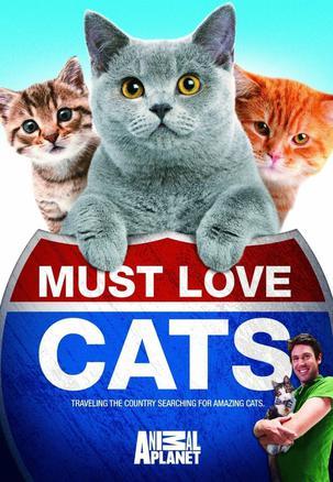 Must Love Cats: Season 2