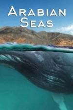 Arabian Seas: Season 1