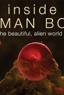 Inside The Human Body: Season 1