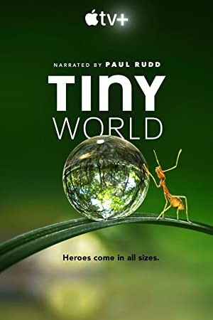 Tiny World: Season 1
