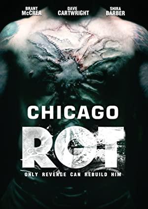 Chicago Rot 2017