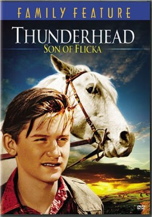 Thunderhead - Son Of Flicka