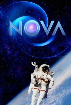 Nova: Season 32