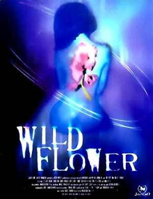 Wildflower 2000