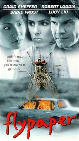 Flypaper (1999)