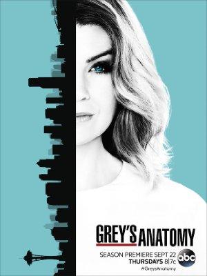 Grey's Anatomy: Season 13