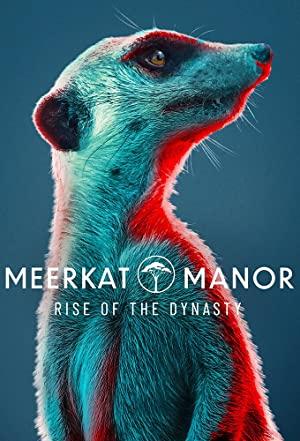Meerkat Manor: Rise Of The Dynasty: Season 1