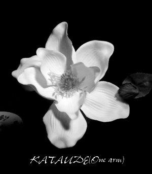 Kataude