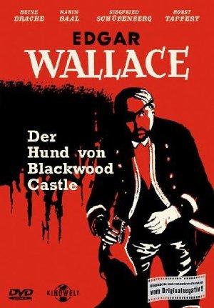 The Monster Of Blackwood Castle