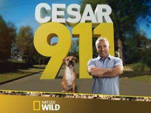 Cesar 911: Season 3