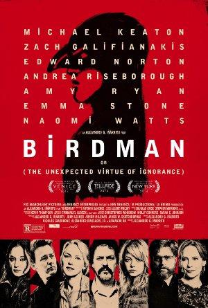 Birdman: Season 1