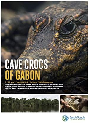 Cave Crocs Of Gabon
