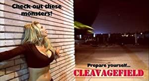 Cleavagefield