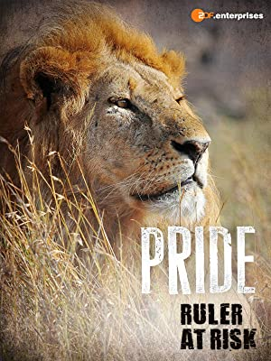 Pride - Ruler's At Risk