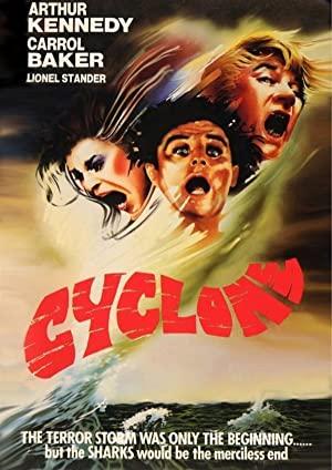 Cyclone 1978