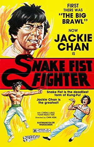 Snake Fist Fighter