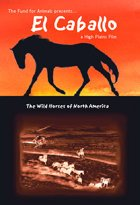 El Caballo: The Wild Horses Of North America