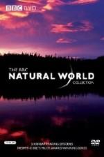 Natural World: Season 34