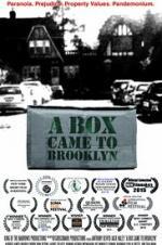 A Box Came To Brooklyn