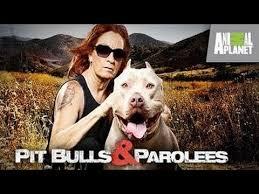 Pit Bulls And Parolees: Season 6