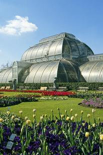 Cruickshank On Kew: The Garden That Changed The World