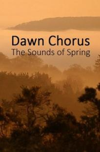 Dawn Chorus: The Sounds Of Spring