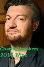 Charlie Brooker's 2014 Wipe
