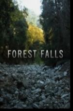 Forest Falls