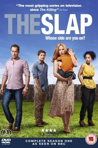 The Slap (2011): Season 1