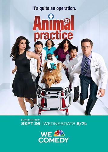 Animal Practice: Season 1