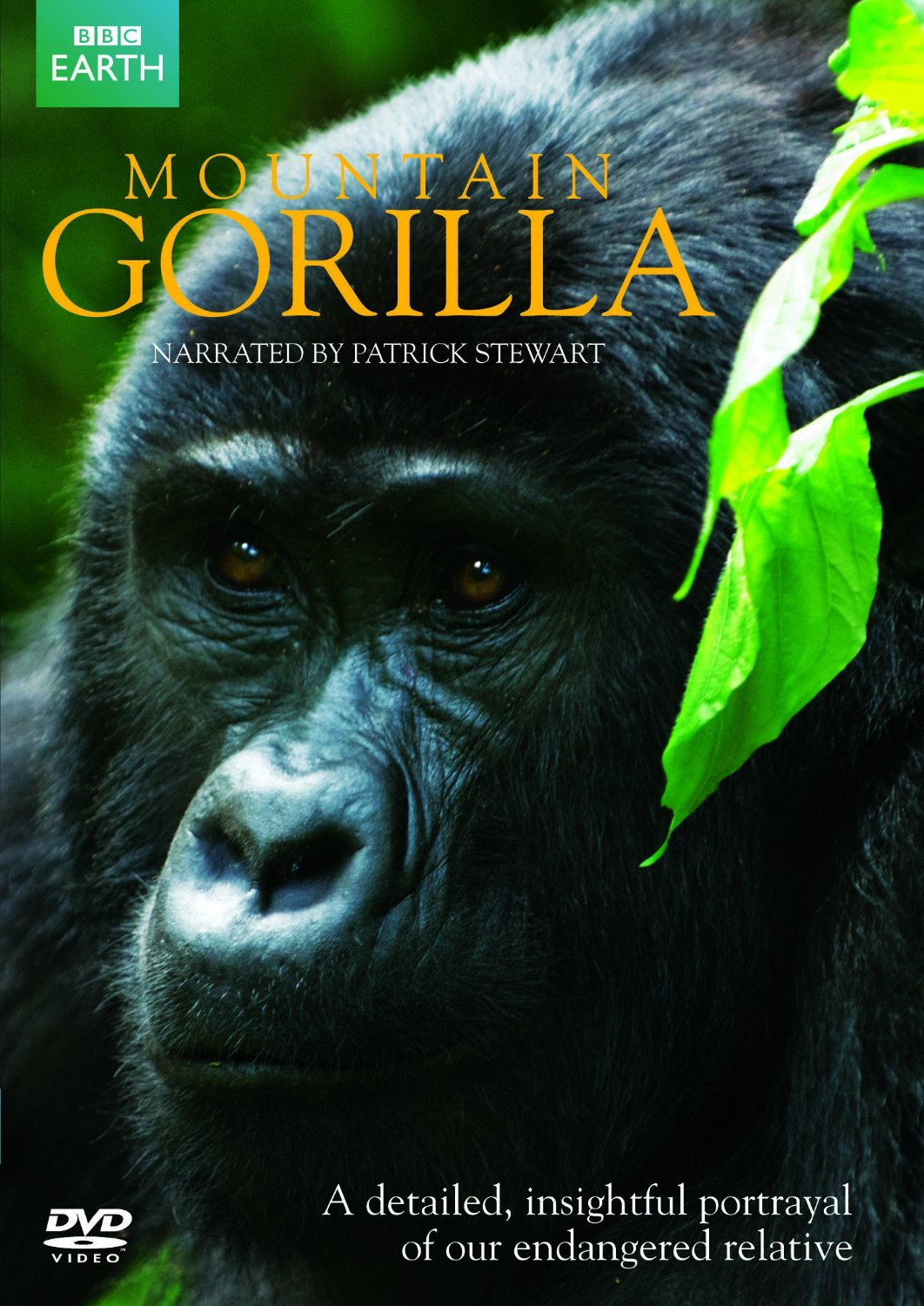 Bbc Mountain Gorilla: Season 1