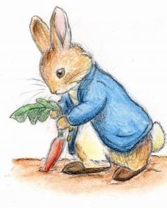 Peter Rabbit 2013: Season 2