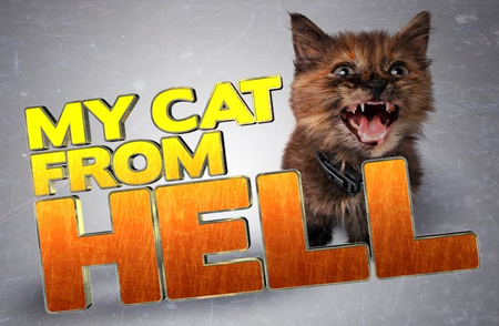 My Cat From Hell: Season 3