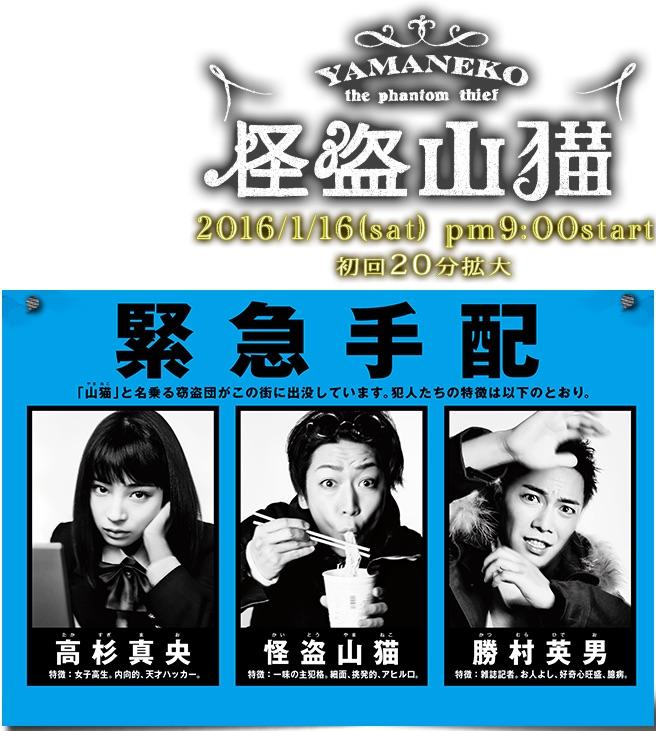 Yamaneko The Phantom Thief (kaito Yamane)