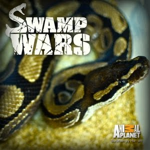 Swamp Wars: Season 2