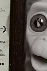 Monkey Love Experiments