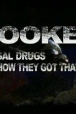Hooked Illegal Drugs & How They Got That Way - Opium Morphine And Heroin