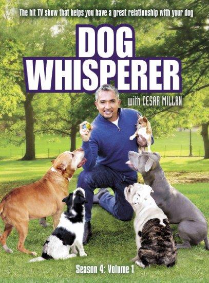 Dog Whisperer With Cesar Millan: Season 4