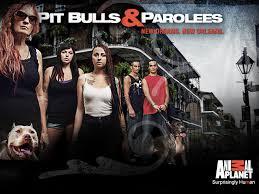 Pit Bulls And Parolees: Season 4