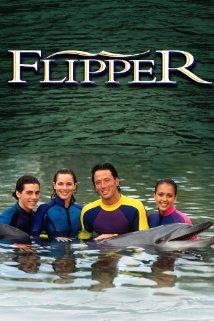Flipper: Season 4